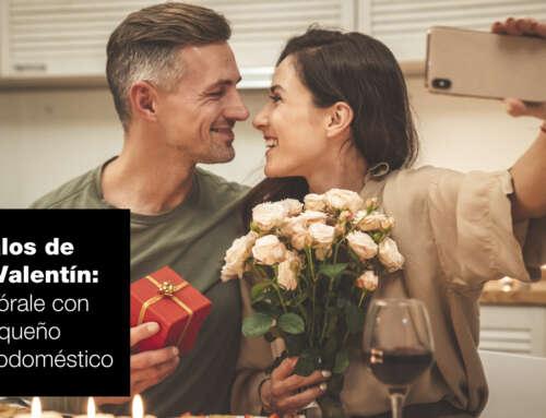 Regalos para San Valentín: enamórale con un pequeño electrodoméstico